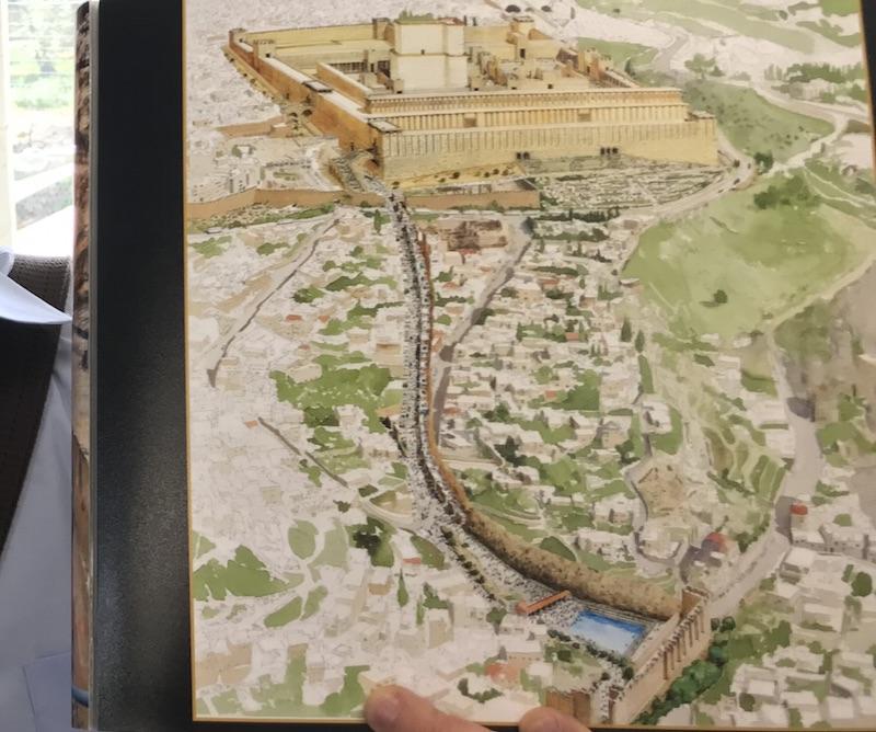 Von der Quelle unten pilgerten die Juden vor 2000 Jahren zum Tempel oben. Die Pilgertreppe wird gerade freigelegt (Foto: Til Biermann)