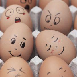 Die einzige Art, Eier zu kochen: Teil II